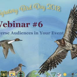 WMBD Webinar – Engaging Diverse Audiences in Your Event