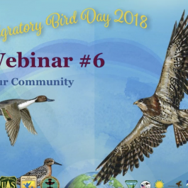 WMBD Webinar – Engaging The Community