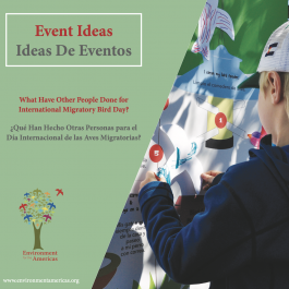 WMBD Event Ideas Flipbook