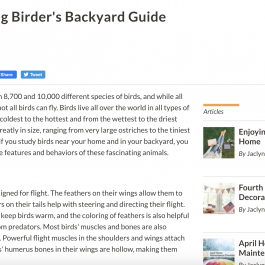 The Young Birder's Backyard Guide