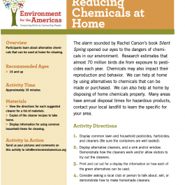 Reducing Chemicals At Home