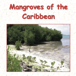 Mangroves Of The Caribbean ID Guide