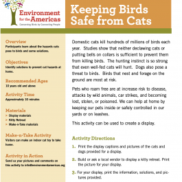 Keeping Birds Safe From Cats