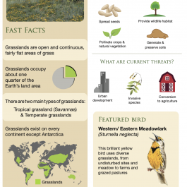 Habitat Factsheets