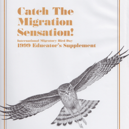 Catch The Migration Sensation!