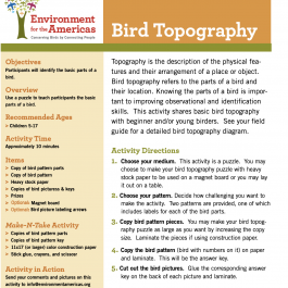 Bird Topography