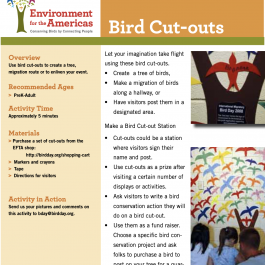 Bird Cut-Out