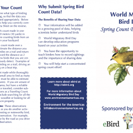 Bird Count Data Sheet