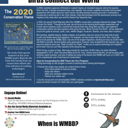 2020 One Pager