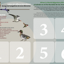 2021 World Migratory Bird Day Passport