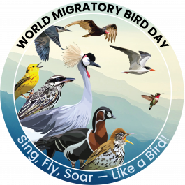 2021 WMBD Global Logo (English & Spanish)