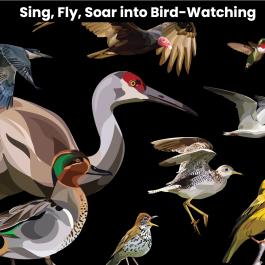 2021 Birdwatching – Yard Sign